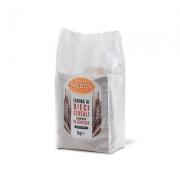 Farina ai 10 cereali kg1