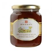 Miele di montagna melata di bosco gr250