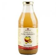 Frutta da bere mela-zenzero senza zucchero ml.750 bio